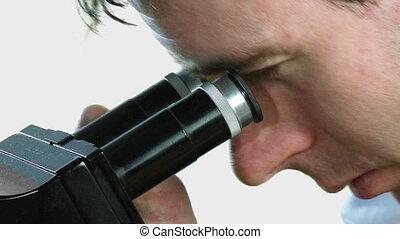 patrząc, człowiek, microscpoe