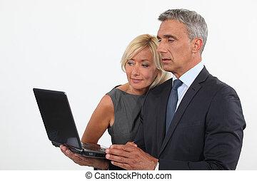 patrząc, koledzy, ekran komputerowy
