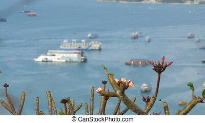 PATTAYA, THAILAND - February 7: View of the Gulf South China...
