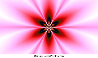 Pattern - a lotus