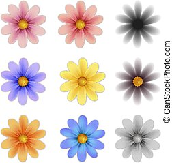 Pattern flower five petal set isolated on background (vector...