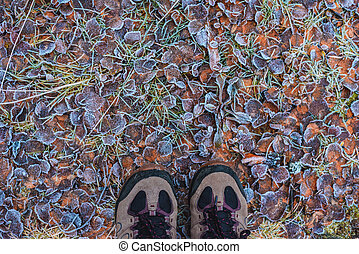 Pattern from fallen leaves in hoarfrost with shoes late fall