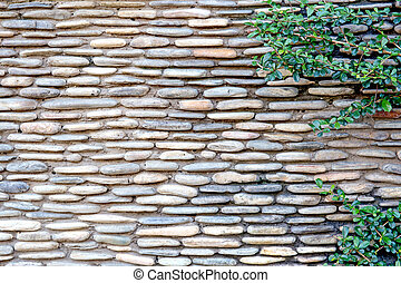 pattern modern style design decorative cracked real stone wall surface with cement and plant