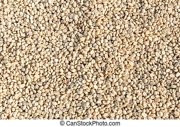 Pattern of coffee beans, Can use for background