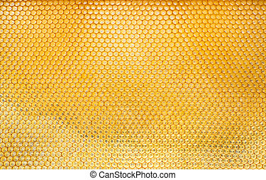 Pattern of hexangon honeycomb in a beehive without bees