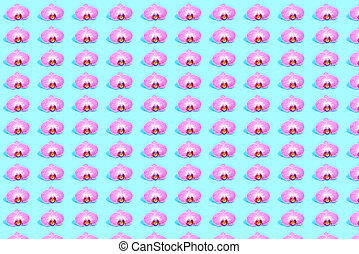 Pattern of pink orchid on the bue background.