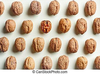 pattern of walnuts
