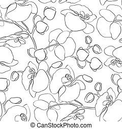 pattern., orchidee