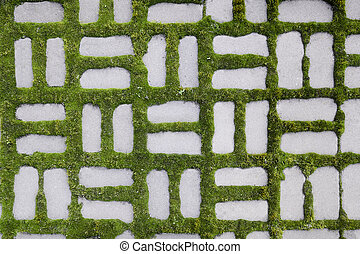 pattern with a sprouted grass I