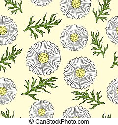 Pattern with camomile and leaves hand drawing.