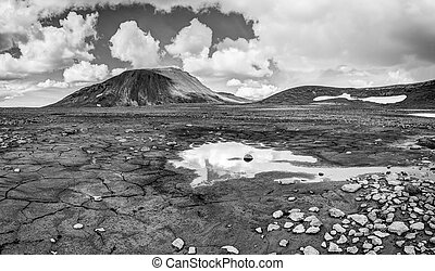 Patternd ground with mud cracks in beautiful primordial ...