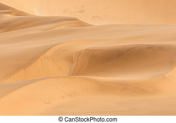 Patterns in the sand of the Namib 2