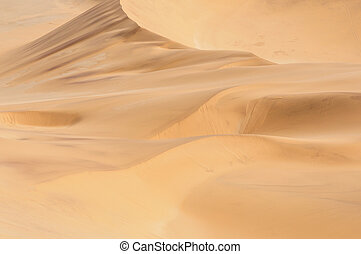 Patterns in the sand of the Namib 3