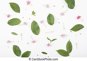 Patterns with green leaves and flowers on white background, lay flat, the top view.