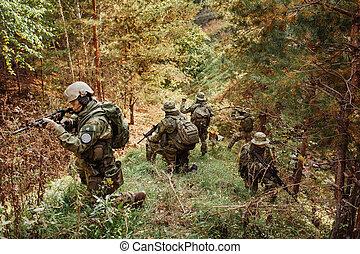 pattes, intelligence, bois, groupe, militaire