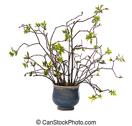 patttern of young twigs with green small leaves in ceramic ...