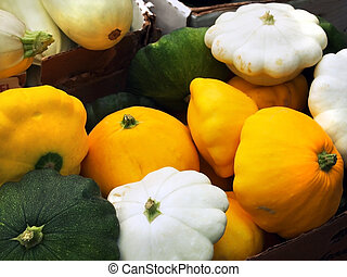 Boxes of colorful pattypan squash for sale at a local farmer's market.