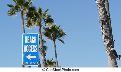 paume, californie, voyage, recours, fetes, bord mer, promenade, signpost., pacifique, ensoleillé, paumes, oceanside, aesthetic., arbres, usa., été, signe, plage, vacations., beachfront, touriste, symbole