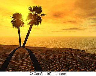 paume, coucher soleil, arbres