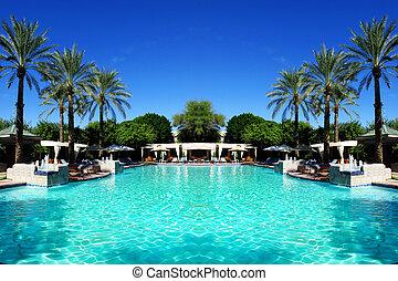 paume, piscine, arbres, natation