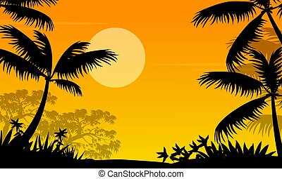 paume, silhouette, coucher soleil, paysage, jungle