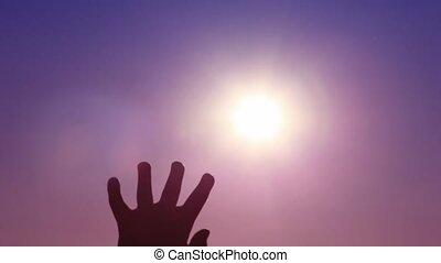 paumes, famille, soleil, trois, contre, toucher, ouvert
