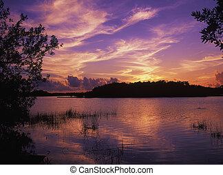 paurodus, coucher soleil, étang