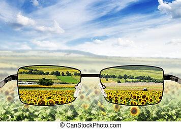 pauvre, vision., concept, lunettes soleil, -, sunglasses.