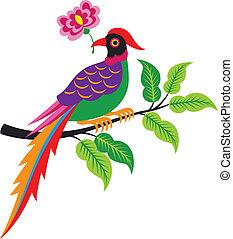 pavão, árvore, ilustração