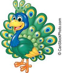 pavão, caricatura, engraçado, isolado