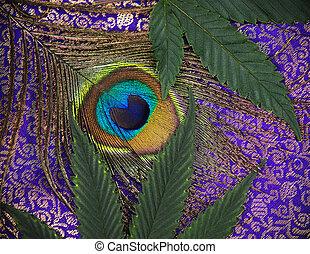 pavão, folhas, cannabis, fundo, pena, abstratos