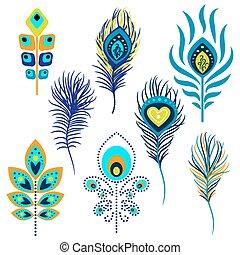 pavão, vetorial, penas, clipart., ilustração