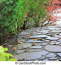 Paved path in a autumn park