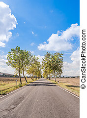 Paved road in the Tuscan countryside