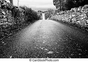 paved road straight to infinity between the dry stone walls in Puglia