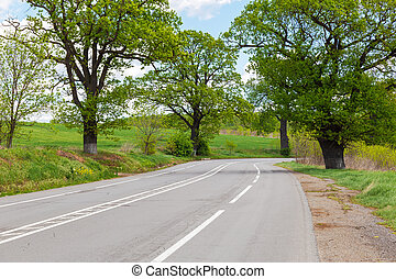 Paved road with road markings and trees on the side of the road