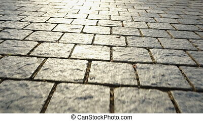 Pavement made of stone. Beautiful garden walkway.