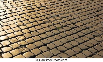 Paving stones texture. Square stones and sunlight.