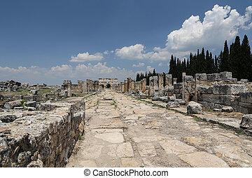 pavo, frontinus, antiguo, ciudad, calle, puerta, hierapolis