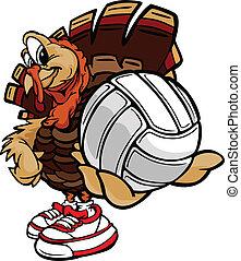 pavo, pelota, imagen, acción de gracias, voleibol, vector, tenencia, feriado, caricatura