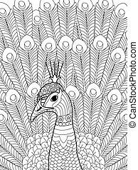 pavo real, colorido, vector, para, adultos
