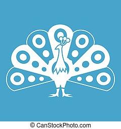 pavone, coda, icona, bianco, fluente