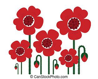 pavot, blanc, retro fleurit, isolé, rouges