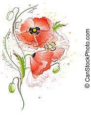 pavot, fleurs blanches, arrière-plan rouge