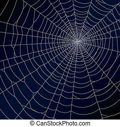 pavouk pavučina