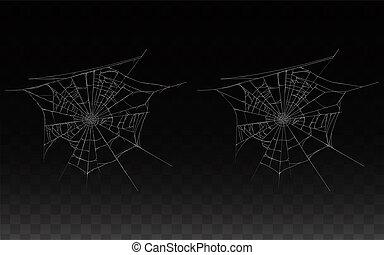 pavučina, pavučina, pavouk, vybírání, realistický
