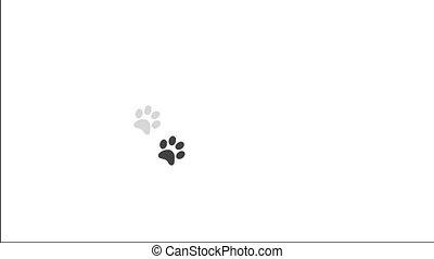 Paw prints animal feet foot footprints pawprints dog cat