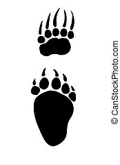 Paw prints animals - Paw print of  bear
