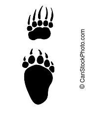 Paw prints animals