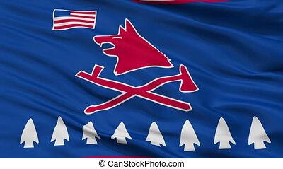 Pawnee Indian Flag Closeup Seamless Loop - Pawnee Indian...